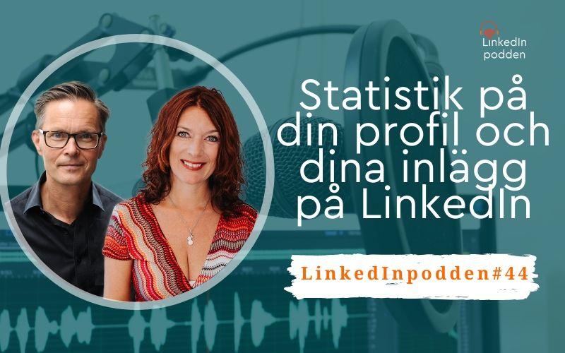 statistik LinkedIn profil